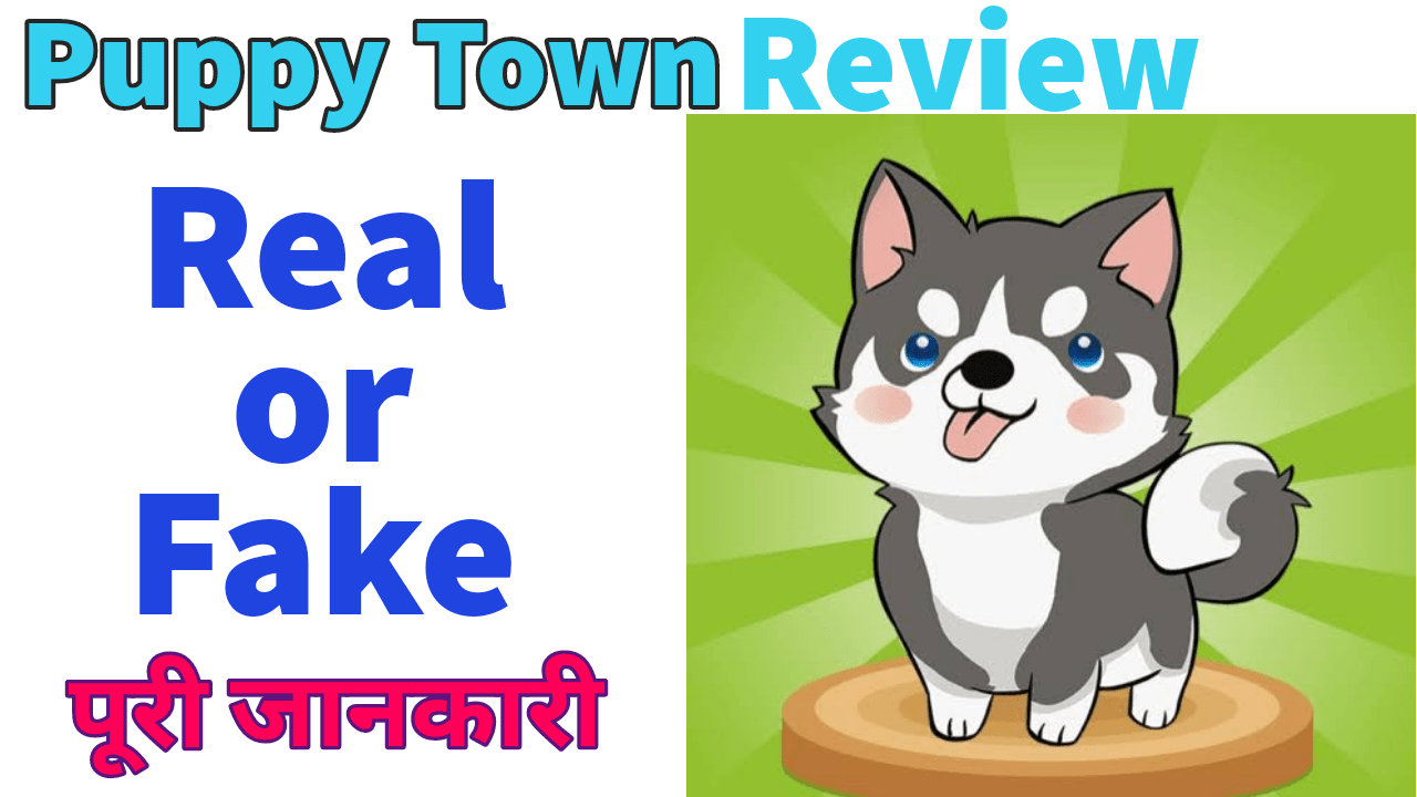 Puppy Town Real or fake
