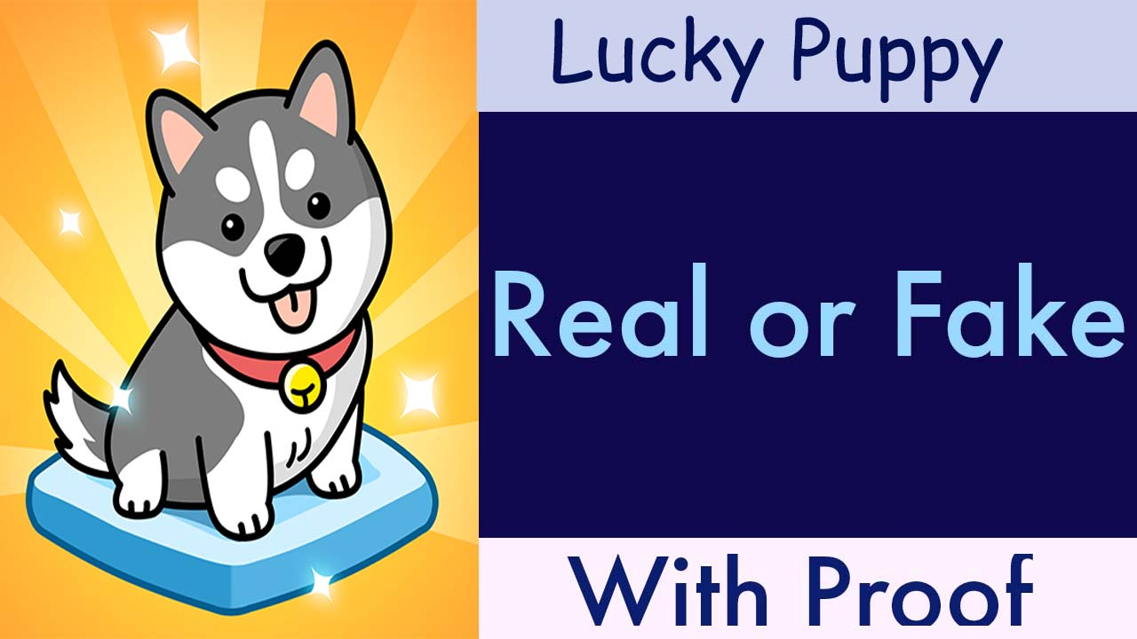 Lucky Puppy game review