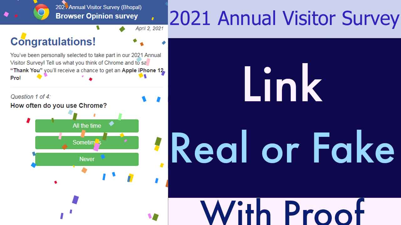 2021 Annual Visitor Survey